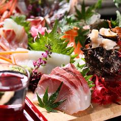 ととりや 魚鳥や 渋谷駅前店のおすすめ料理1