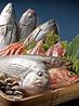 魚釜 日本橋横山町店のおすすめポイント1