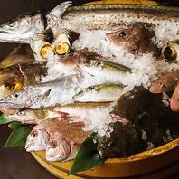 前獲れ鮮魚