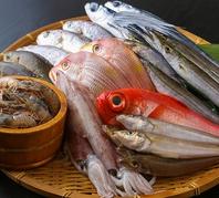 旨い三河湾の魚と愛知の食材を使用。地産地消にこだわり