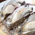 料理メニュー写真越野水産直送の厚岸産生牡蠣