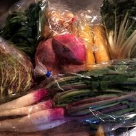 契約農家さんから届く新鮮で安心なオーガニック野菜