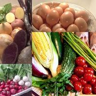 地産地消にこだわった仕入れ。地物野菜や卵など