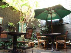 自慢のお庭。天気の良い日は上をオープン!
