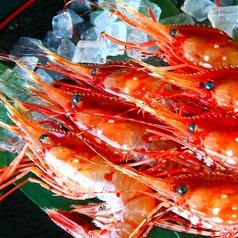 北海道 増毛町魚鮮水産 すすきの第3グリーンビル店特集写真1