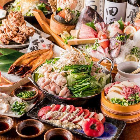 各種ご宴会は勿論、カジュアルな接待や記念日・誕生日等にもオススメの飲み放題付コースをご用意しております。当店自慢の鮮魚や逸品料理をたっぷりお楽しみください。味・見た目共に大満足と皆様にご好評をいただいている当店のご宴会コース!お気軽にお問い合わせくださいませ!