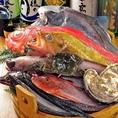 大人気!!【日替わりおすすめメニュー】その日のオススメ鮮魚をスタッフがお席までお持ち致します!!何が届くかはその日の漁次第★好きなお魚、食べてみたいお魚をお選び下さい!!おすすめの調理法をご提案致します♪