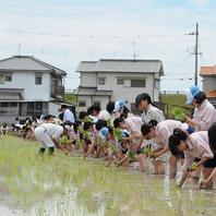 農業高校の生徒さんがお米も栽培。共同開発日本酒も!!