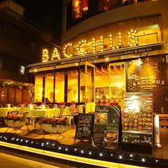 地中海バル バッカス BACCHUS 表参道の雰囲気1