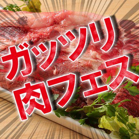 【ガッツリ肉フェスコース】(全6品)4500円【お得なクーポンご利用ください】