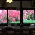 みんなでワイワイするのにぴったり!窓からピンク色の山ツツジが見渡せます。2021年は四月下旬から五月上旬が見頃です。美味しい料理を召し上がりながら風景を楽しんで下さい。