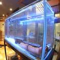 お店オススメの魚介が店内入ってすぐの水槽に!気になるお魚がいるときはスタッフまで!