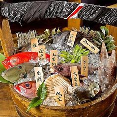 なきざかな 鳴魚の特集写真