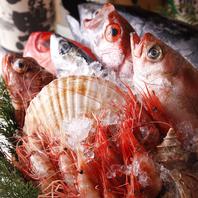静岡の新鮮な魚介や新鮮なお肉を使用した焼き鳥も人気