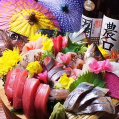 本日の鮮魚のお造り(本マグロ・アオリイカ・バイ貝・のどぐろ・サーモンいくら添えなど)