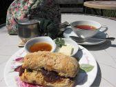 マナーハウス モトヤマのおすすめ料理3