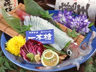 福岡県産・一本槍の活イカ入荷中!!