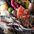 """通常の居酒屋との鮮度の違いは「流通」にございます!朝の市場の一番セリ直送!産地直送の和さ美だから実現した鮮度と価格です。""""太陽の恵み""""とも称される「三浦野菜」をふんだんに取り入れた飼料で育った神奈川沖の鮮魚をご用意しております。"""