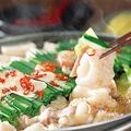 料理メニュー写真もつ鍋【2つの味からお選びください】鶏塩白湯/トムヤム
