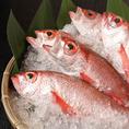 お鍋に入れる海鮮やお刺身は、その日に水揚げされた新鮮な魚を漁港から直送で仕入れております。身のやわらかさと光沢がわかる鮮度の高さが自慢◎ぜひ当店だけの味わいをご堪能ください!
