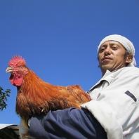 生産者が『こだわり育てた』最高の鶏をご提供!
