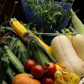 【こだわり食材】県内産の食材を中心に使用
