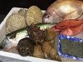 料理メニュー写真ある日のイチオシ鮮魚♪