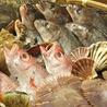 大漁酒場 魚樽 袋町支店のおすすめポイント3