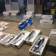 高松中央市場26番大海鮮魚