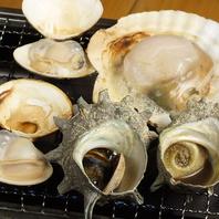 浜焼き食べ放題!!殻付ホタテ・サザエ・白はまぐりの3種