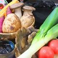 料理メニュー写真旬のお野菜お任せ3種盛り