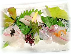 料理メニュー写真鯛造り