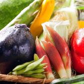 【季節のお野菜】市場から仕入れた京野菜などを使用。