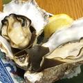 料理メニュー写真似島産 殻付き牡蠣