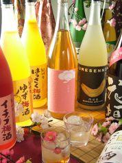 梅酒BAR ソウルカンパニー SOUL COMPANYの特集写真