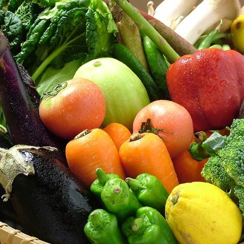 完全個室!生産者様直送旬のお野菜を使った料理や、はかた地どりをお楽しみください。