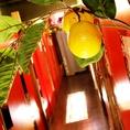 モチーフの柚子も随所にあります★高田馬場駅周辺の居酒屋をお探しでしたら是非、高田馬場個室居酒屋 柚庵~yuan~ 高田馬場駅前店をご利用ください★