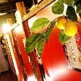 和柄と相まって雰囲気抜群です◎高田馬場駅周辺の居酒屋をお探しでしたら是非、高田馬場個室居酒屋 柚庵~yuan~ 高田馬場駅前店をご利用ください★