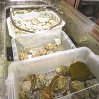 店内に生簀を完備★超新鮮な貝が楽しめます
