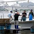 【仕入れへのこだわり】HERO海の故郷・牛深から毎朝旬魚を直送しています!