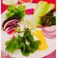 料理メニュー写真新鮮 府中野菜の盛り合わせ