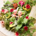 料理メニュー写真数量限定!彩り広島野菜のサラダブーケ