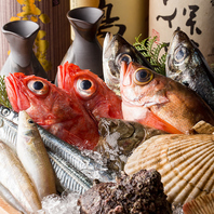 当店自慢の新鮮鮮魚の数々