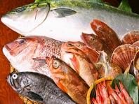 新潟の新鮮な地魚