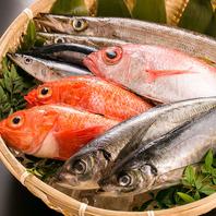 その日いちばん美味しい鮮魚が盛りだくさん!