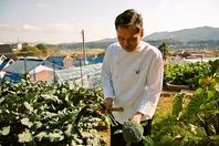 ギャルソン農園で収穫した美味しく安心な野菜たちをぜひ