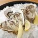 北海道厚岸産ブランド牡蠣『まるえもん』