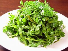 料理メニュー写真本当に緑のサラダ