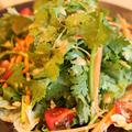 料理メニュー写真【Thailand】嫌いな人はごめんなさい!99%パクチーサラダ