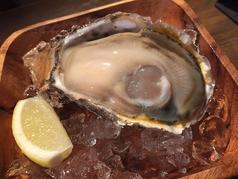 料理メニュー写真生牡蠣(1P)